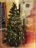 Peter Sieber + Oliver Knape - Weihnachtsbaum